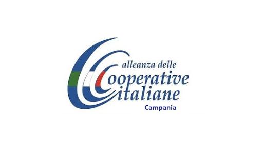 Agricoltura in Campania. Maria Passari nuovo Direttore Assessorato. Soddisfazione dell'Alleanza Cooperative Campania.